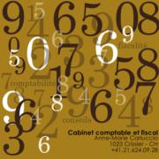 (c) Carluccio.net